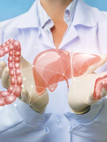 Maestría Internacional en Digestología y Técnicas Endoscópicas (Diploma acreditado por Apostilla de la Haya)