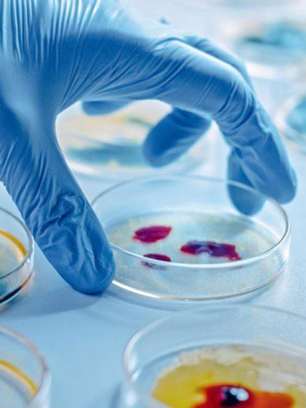 Maestría Internacional en Microbiología Clínica (Diploma acreditado por Apostilla de la Haya)